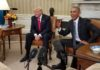 US opioid dependence enforcing insurance laws future uncertain trump presidency