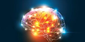 heroin cravings in the brain