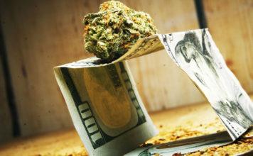 Increase in marijuana use economic insecurity