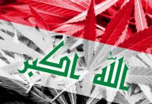 Iraq drug problem