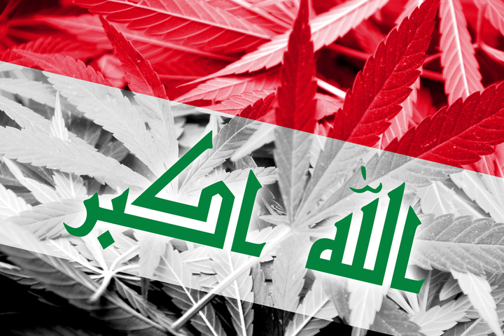 Iraq's growing drug problem: From drug corridor to producer