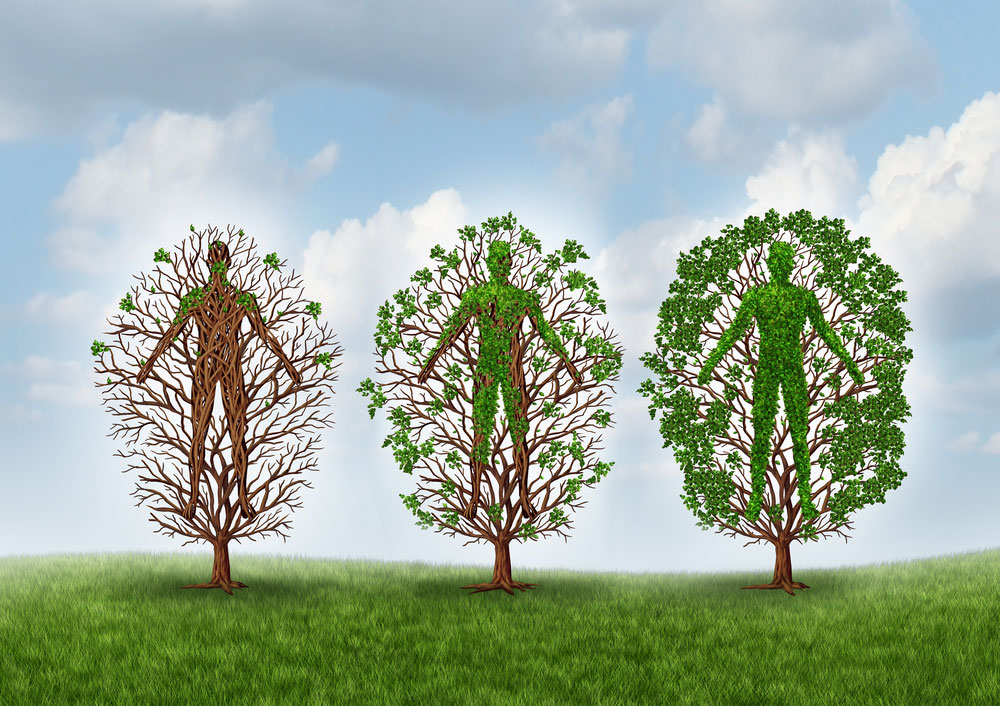 The branches of addiction recovery and intervention approaches