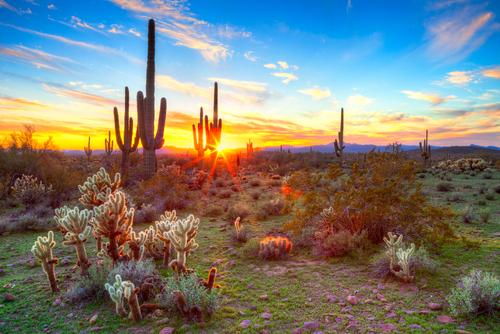 Arizona Sober Living