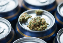 The effect of alcohol and marijuana on academic performance