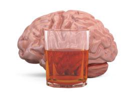 Research breakthrough reveals link between hormone and alcoholism