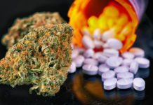 New-study-links-marijuana-use-to-increased-risk-of-opioid-use-disorder