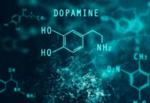 New Dopamine Research Findings May Redefine Addiction Treatment